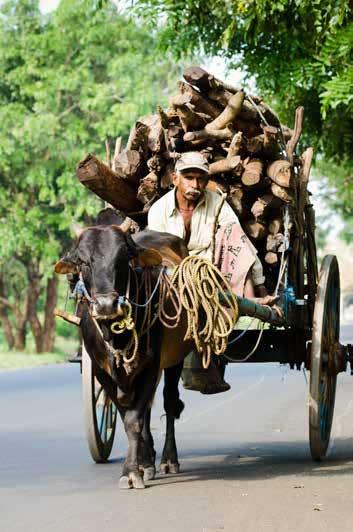 RSI-Country-SriLankaPkgPg-8day_353x532
