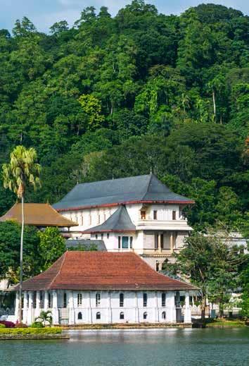 RSI-Country-SriLankaPkgPg-Intensive_354x519