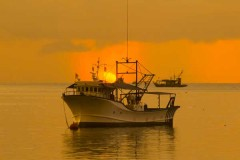 Fishing Boats on a Sea at Sunset