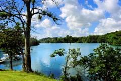 Gatun Lake - Panama