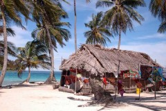 Beach House on Lake