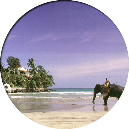 retire in Southeast Asia Sri Lanka retirement services international overseas retiring country landing page elephant image